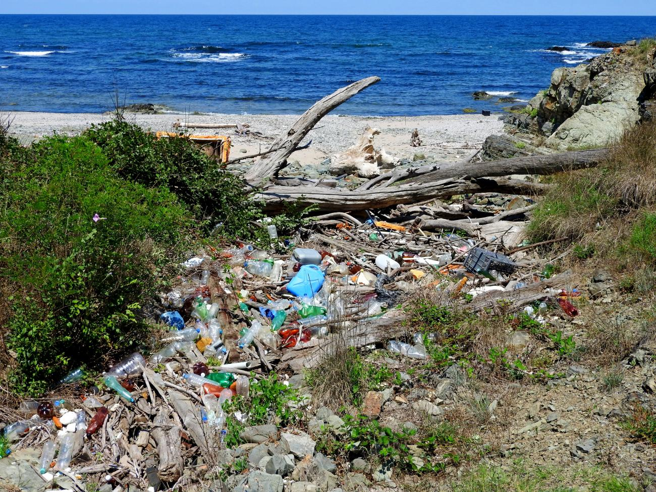 Да почистим плажовете на юг от Синеморец заедно