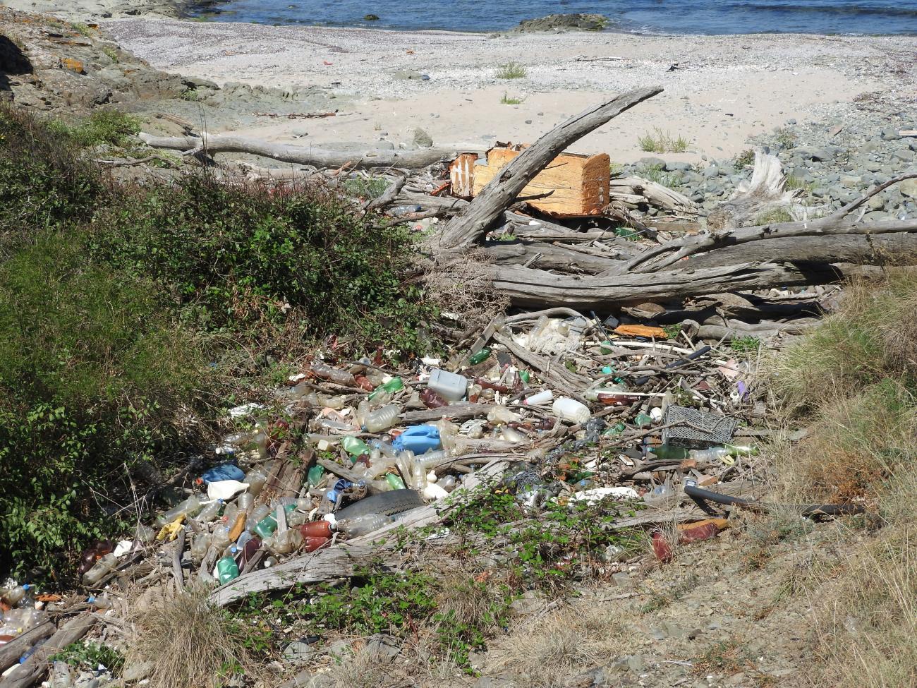 Почистване на защитена местност Ченгене скеле