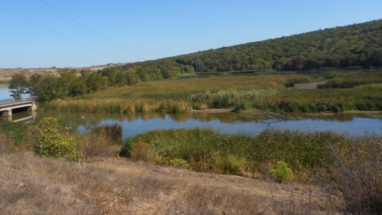 Почистване на защитена местност Устие на Изворска река