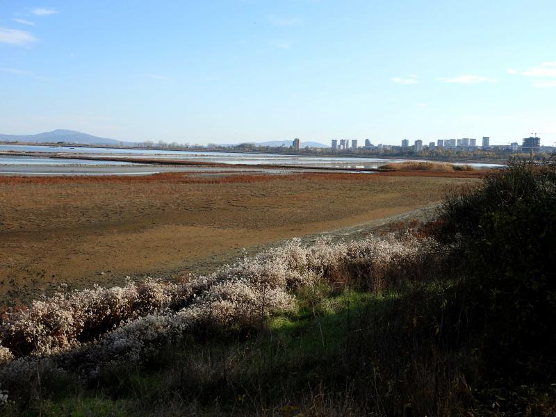Опознай родния край - Атанасовско езеро. ДЕТСКИ ПОХОД